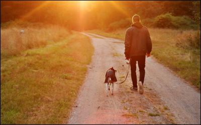 父親と愛犬